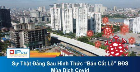 Su-That-Dang-Sau-Hinh-Thuc-Ban-Cat-Lo-BDS-Mua-Dich-Covid