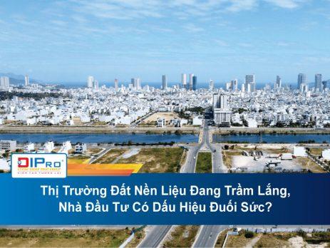 Thi-Truong-Dat-Nen-Lieu-Dang-Tram-Lang-Nha-Dau-Tu-Co-Dau-Hieu-Duoi-Suc.